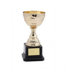 Trofeo Cevit - Imagen 1